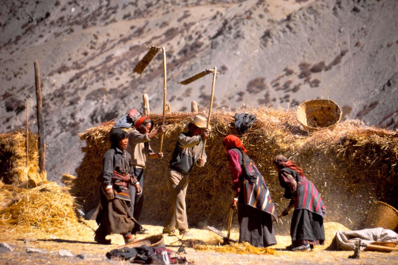 Nepal worker