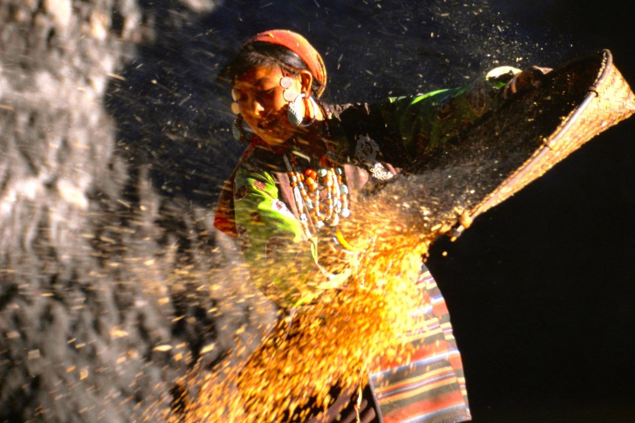Nepal-woman-corn