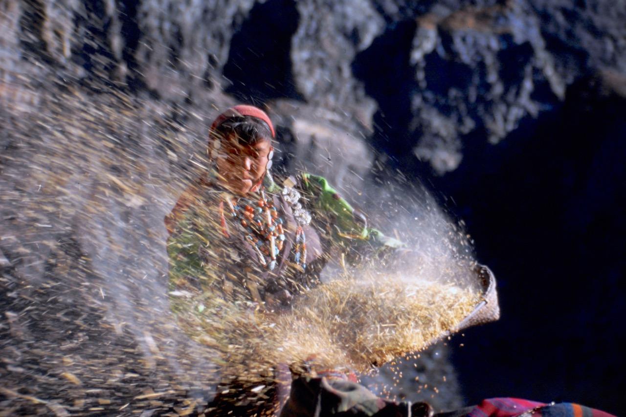 Nepal corn