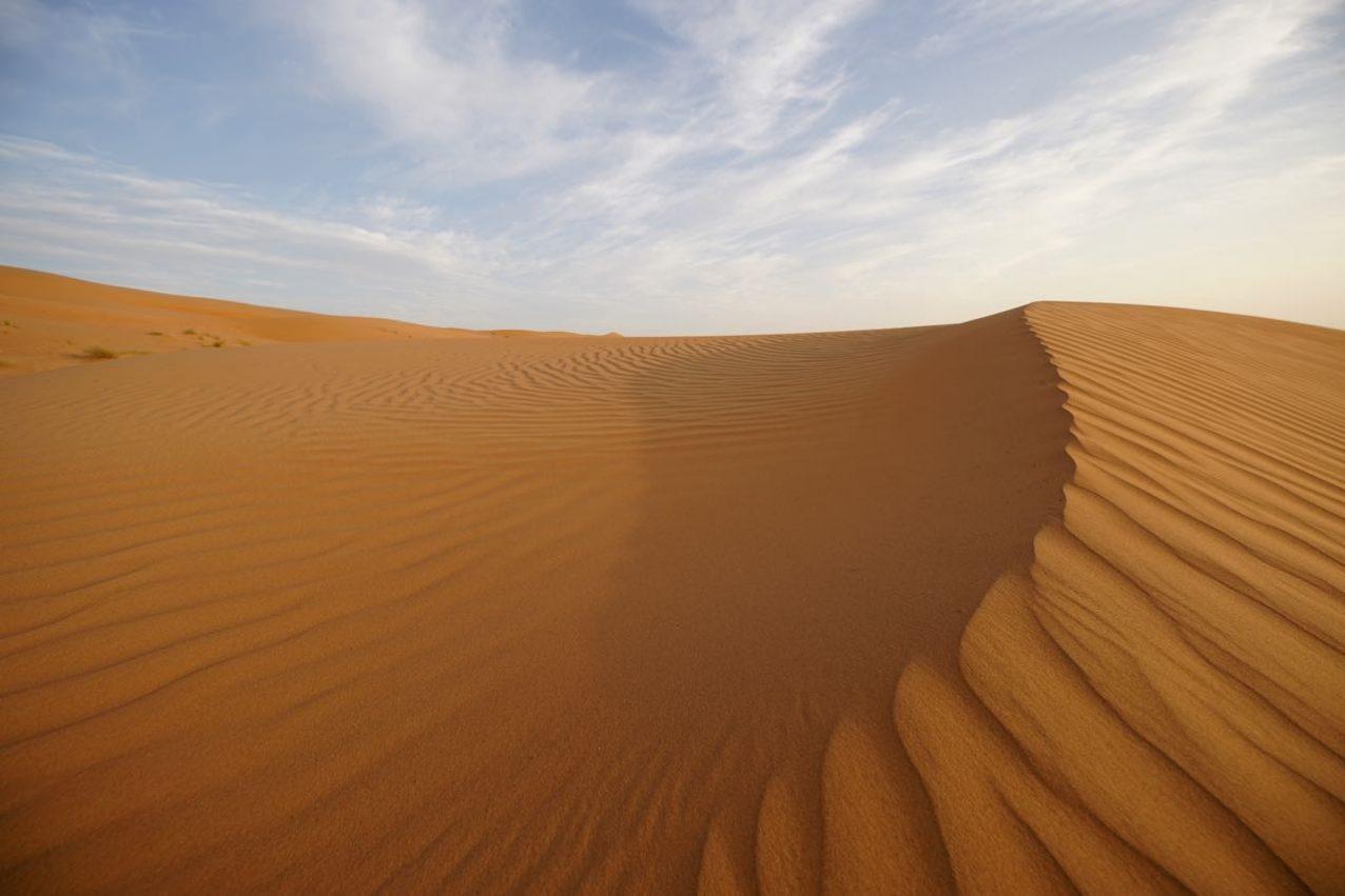 Düne in der Wüste im Oman