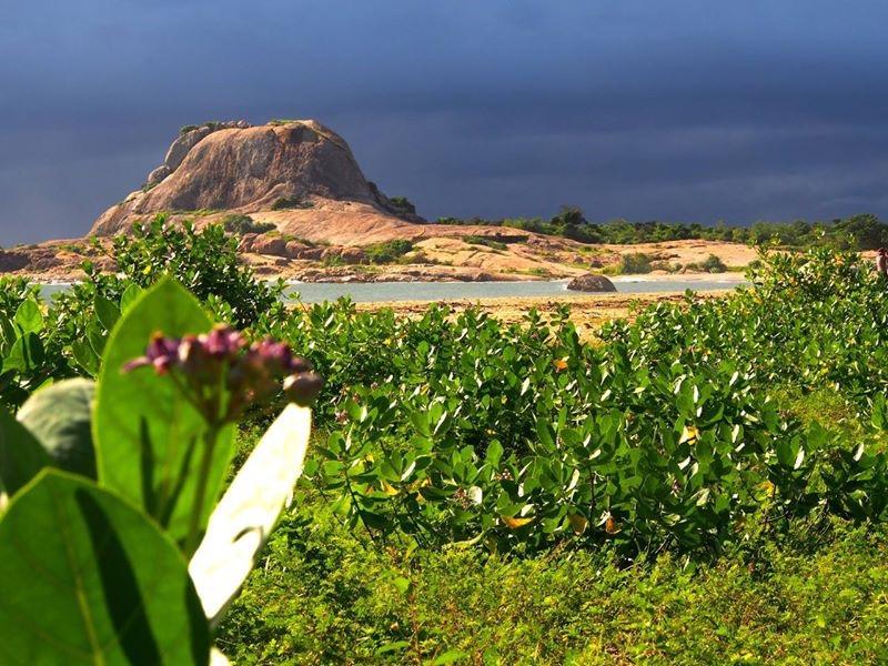 Sri-Lanka-2016-mountain