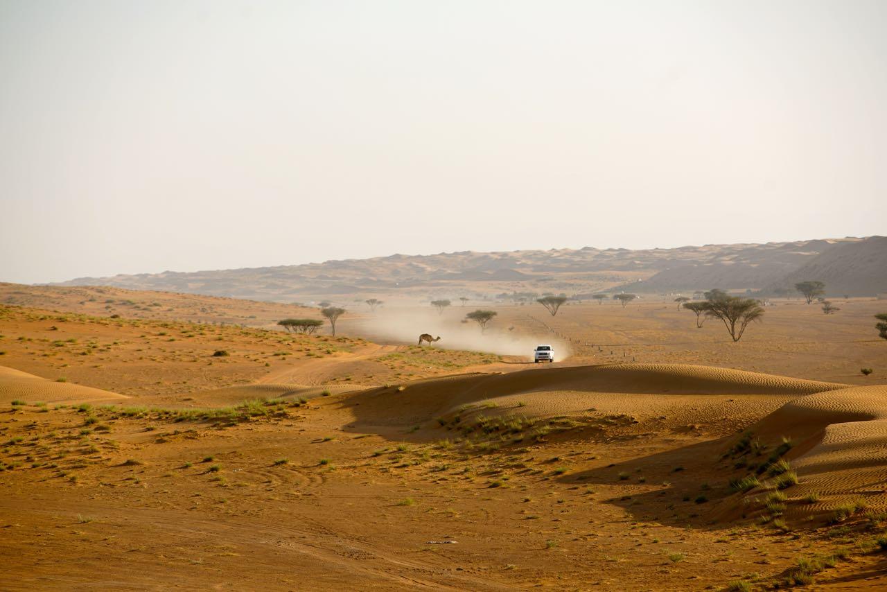 Nomadic Desert Camp in Oman