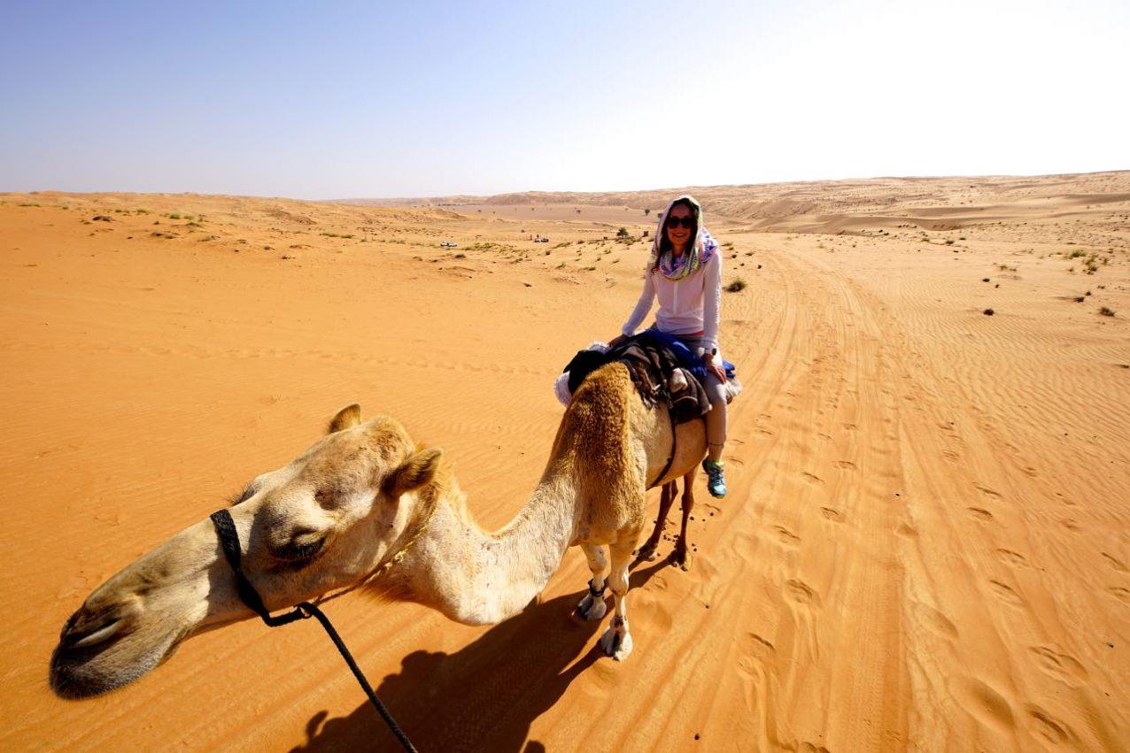 Kamel reiten im Oman