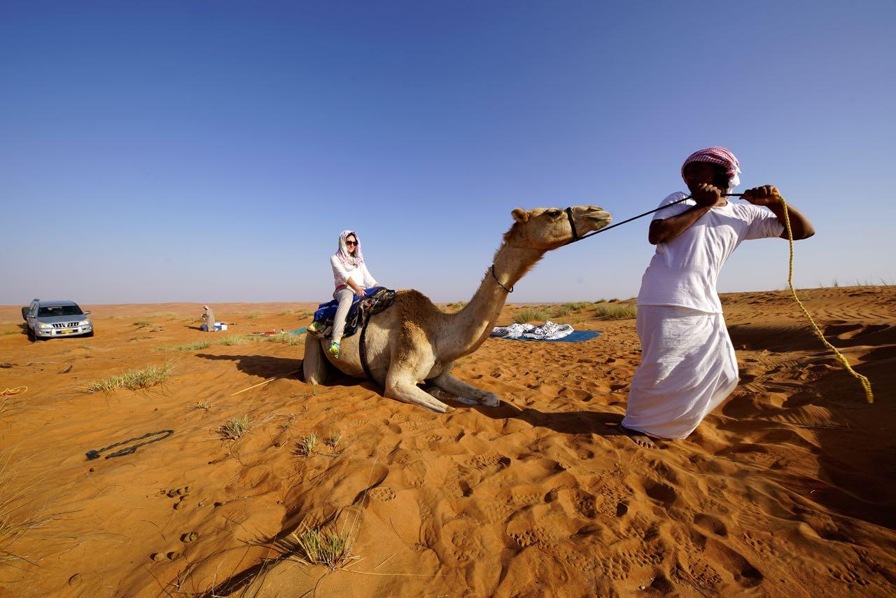 Dromedar reiten in Oman