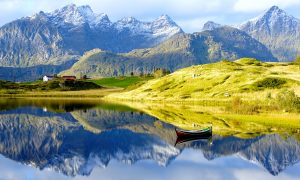 Homage to Lofoten's Nature – 150 Days Summer