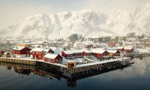 Hommage to Lofoten's Nature – 150 Days Winter